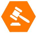 Litigation Work
